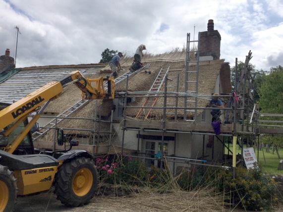 Men thatching a cottage
